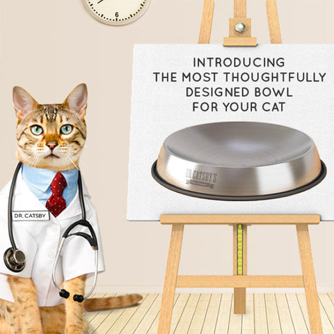 Dr. Catsby's Stainless Steel Anti-Whisker Stress Cat Food Bowl