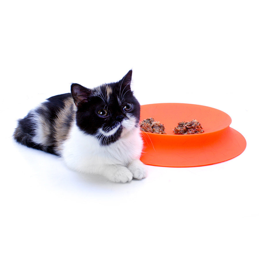 Saucer Silicone Cat Food Dish Designed by Rebecca Finell