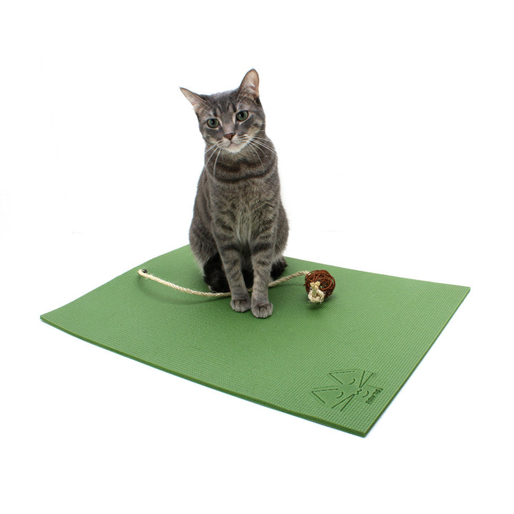 Yoga Cat Mat from Feline Yogi