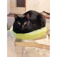 Fruit Slice Cat Beds