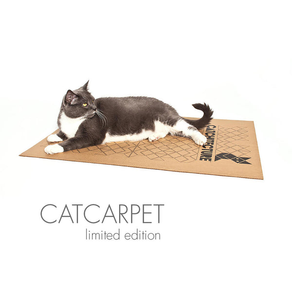 Octacat Contemporary Cardboard Cat Hideaway From