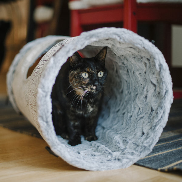 Purr Amp Pounce Cat Tunnel From P L A Y Hauspanther