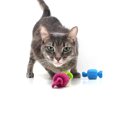 Taffy Roll Cat Toys