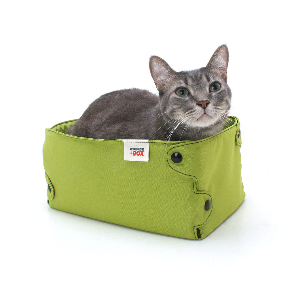 Whisker Box Cat Bed Hauspanther