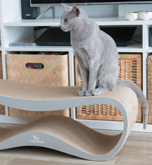 LUI Cat Scratcher & Lounge from MyKotty