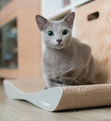 TOBI Cat Scratcher & Lounge from MyKotty