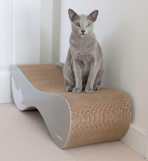 VIGO Cat Scratcher & Lounge from MyKotty