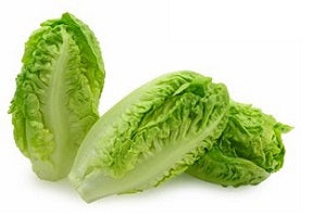 Lettuce Baby Gem Pack of 2