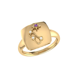 Aquarius Water-Bearer Amethyst & Diamond Constellation Signet Ring in 14K Yellow Gold on Sterling Silver