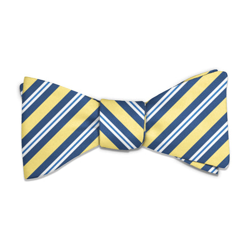 Bruce Stripe Bow Tie -  -  - Knotty Tie Co.