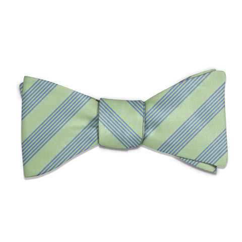 Lincoln Stripe Bow Tie -  -  - Knotty Tie Co.