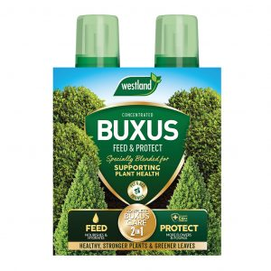 Buxus 2 In 1 Feed & Protect Westland