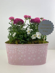 Mothers Day Pink Trough