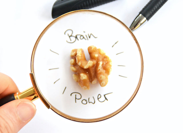 Brain power walnut