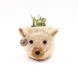 CAT SUCCULENT PLANTER - ANIMAL HEAD PLANTERS | LIKHÂ
