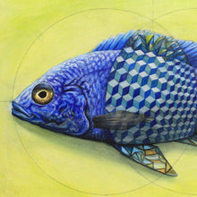 Load image into Gallery viewer, Iteration 68: Vesica Piscis Cichlid