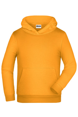 James & Nicholson JN796K Promo Hoody Children