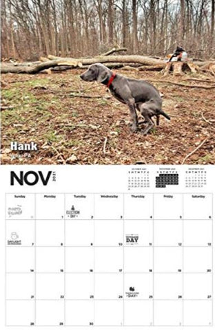 Pooping dogs calender