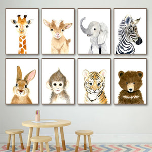Baby Tiger Canvas Print