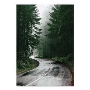 Scandinavian Forest Road Canvas Print
