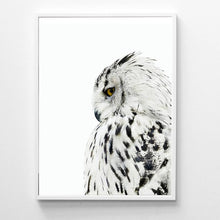 Load image into Gallery viewer, White Owl