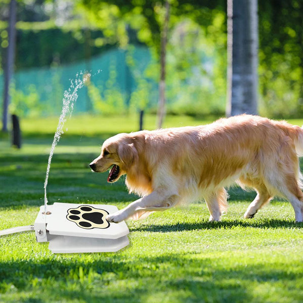 Outdoor Dog Pet Water Fountain - Gear Tree