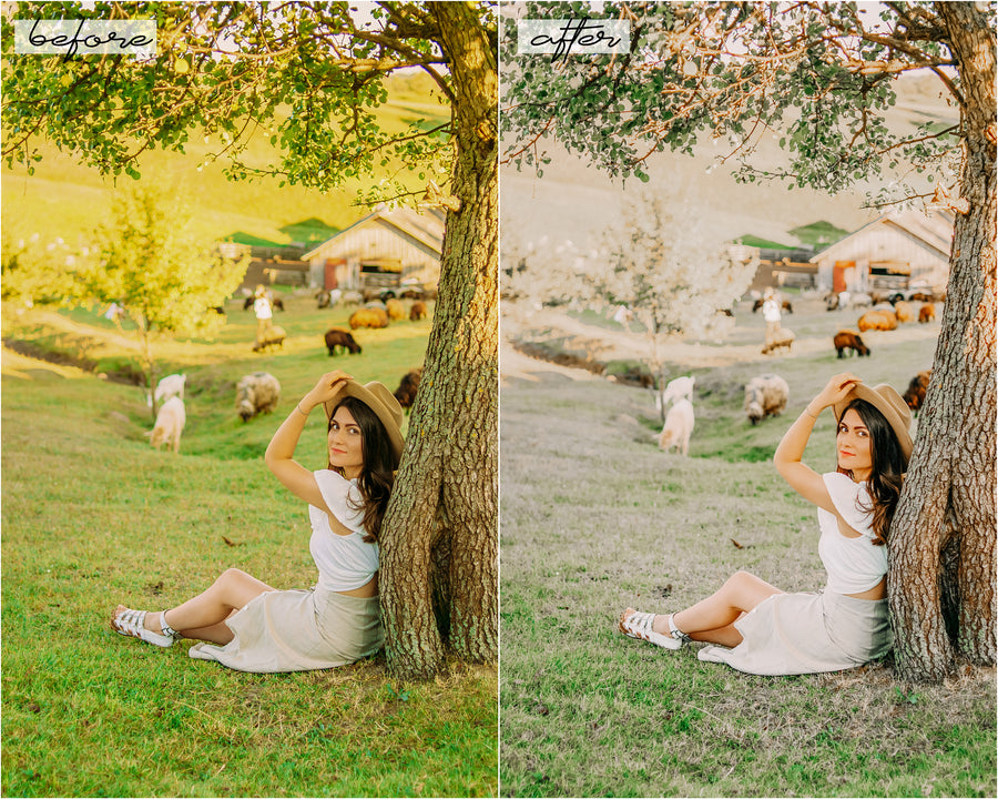 Bright and Airy Desktop Lightroom Presets