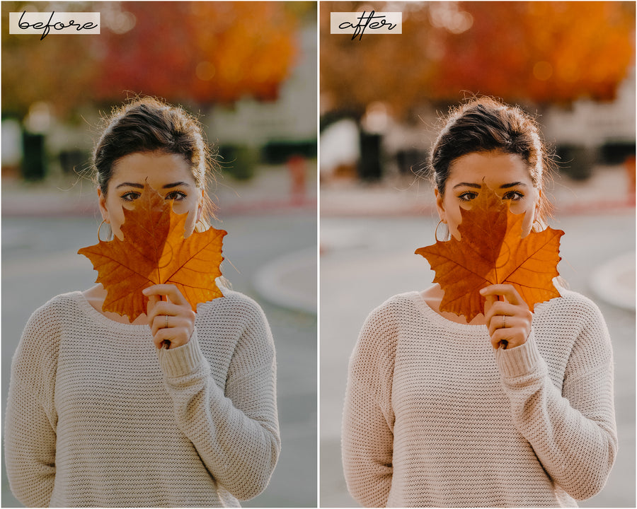 Autumn Desktop Lightroom Presets - Hyggely Presets and Branding