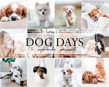 Dog Days Mobile Lightroom Presets - Hyggely Presets and Branding