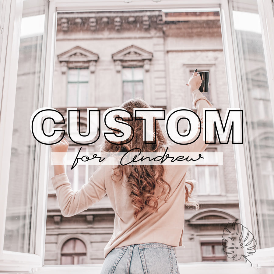 CUSTOM FOR ANDREW - 6 CUSTOM PRESETS FOR RESALE - Hyggely Presets and Branding