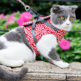 Small Pet (Cat or Dog) Outdoor Vest/Travel Harness/Leash - GreenLime Online Store