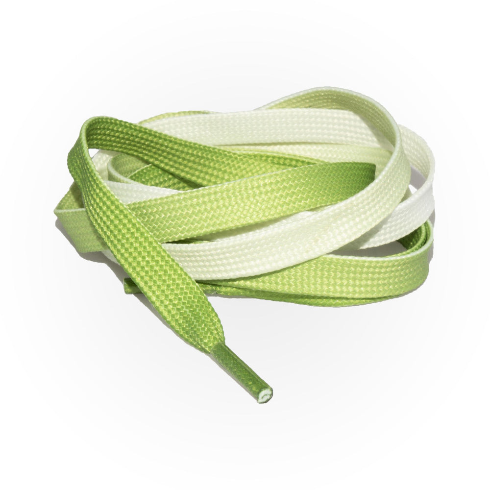 SneakerScience Fade Flat Laces - Green
