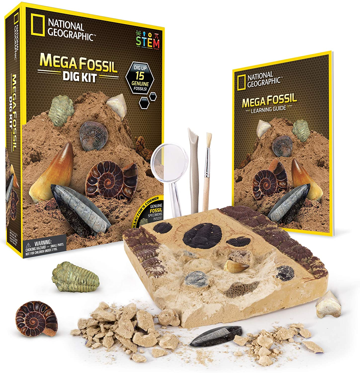 NATIONAL GEOGRAPHIC Mega Fossil Dig Kit – Excavate 15 real fossils including Dinosaur Bones & Shark Teeth, Educational Toys
