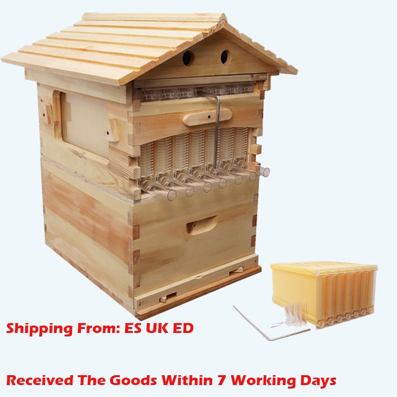 Automatic Wooden Bee Hive