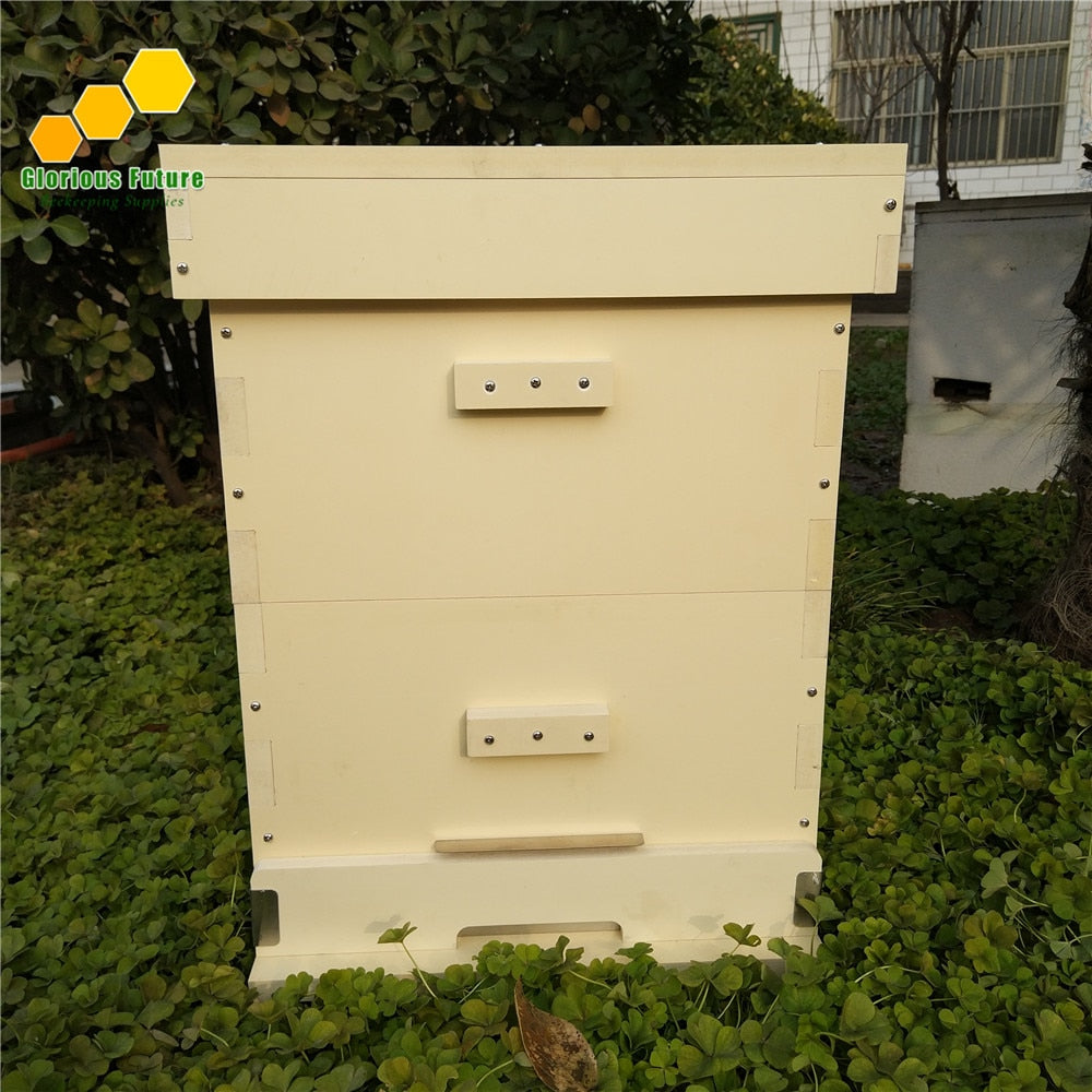 Two Level Beekeeping Equipment Plastic Beehive