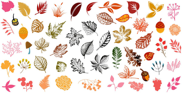 Autumn Fall Leaves Nail Art Decals Set #3