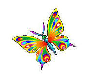 Colorful Butterfly waterslide nail decal
