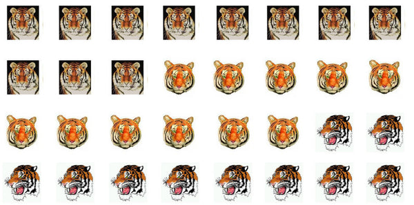 Tiger waterslide nail decals