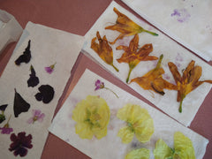 Dried flowers, Witch from the West