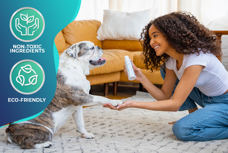 Healthy and Germ-free environment and pet-friendly