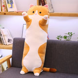 Long Plush Cats