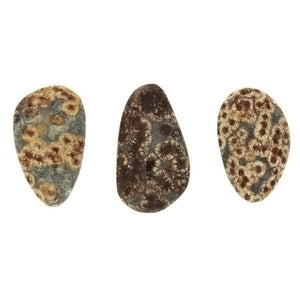 FREEFORM GEMSTONE JASPER BLOOD CABOCHONS