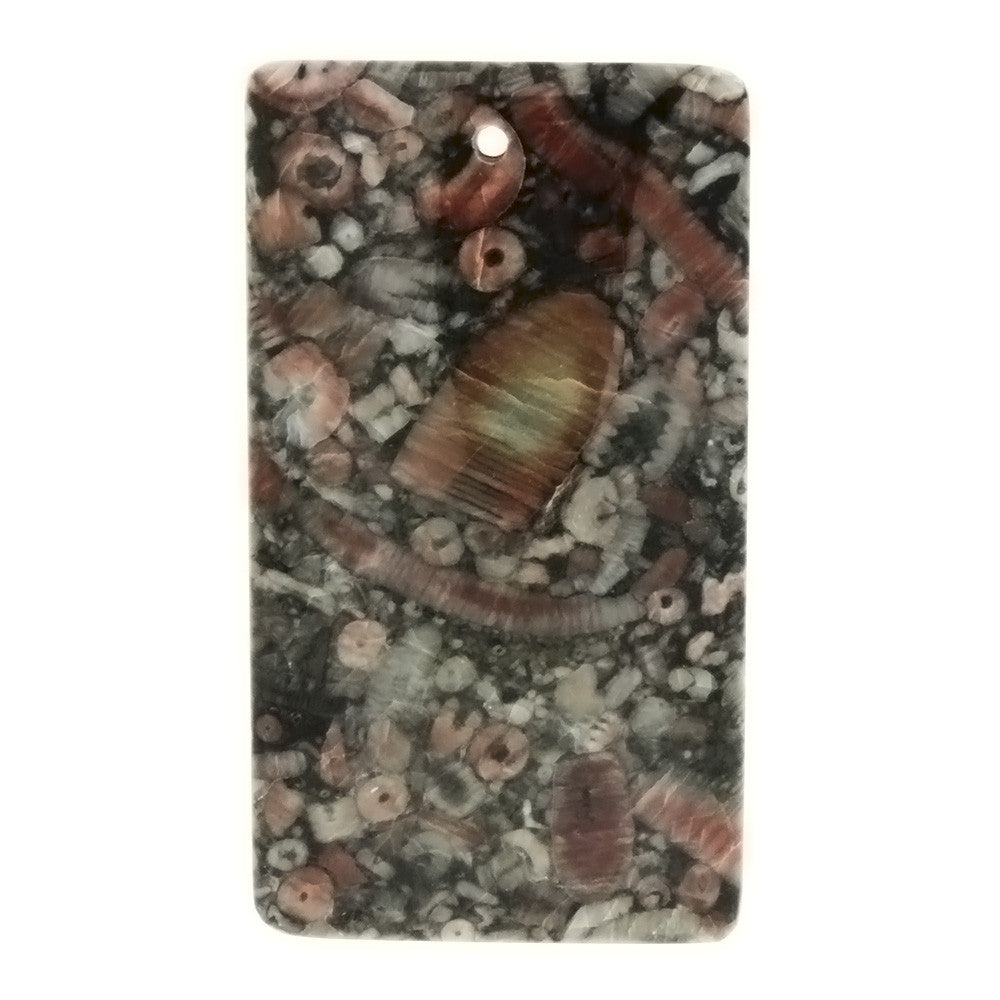 GEMSTONE AGATE FOSSIL RECTANGLE 25 X 45 MM PENDANT