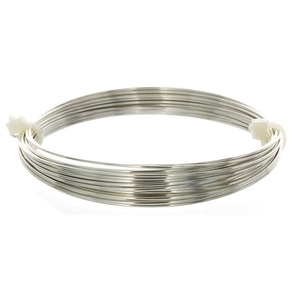 GENERIC 20 GAUGE ROUND SS WIRE (1 FT)