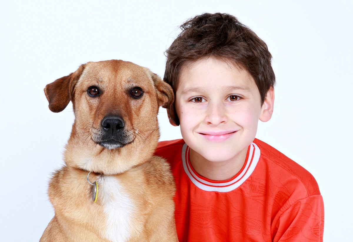 Five Benefits Children Experience When Owning Dogs