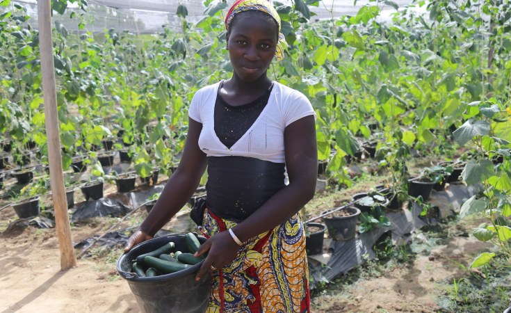 Africa: How Women-Led Agribusinesses Are Boosting Nutrition in Africa