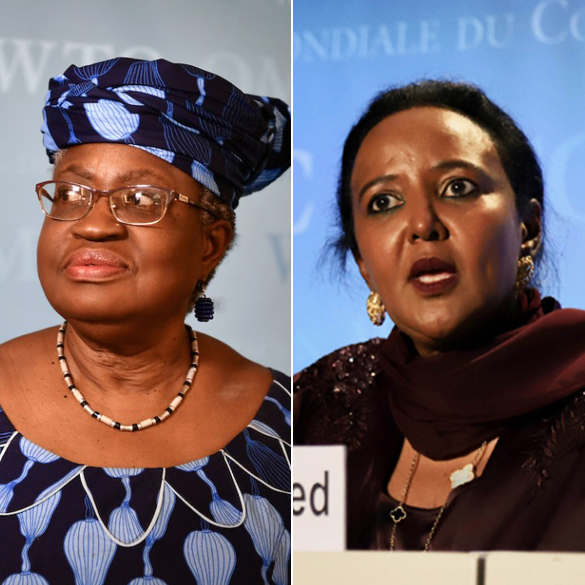 African Development: Two African Candidates Make WTO Final Five