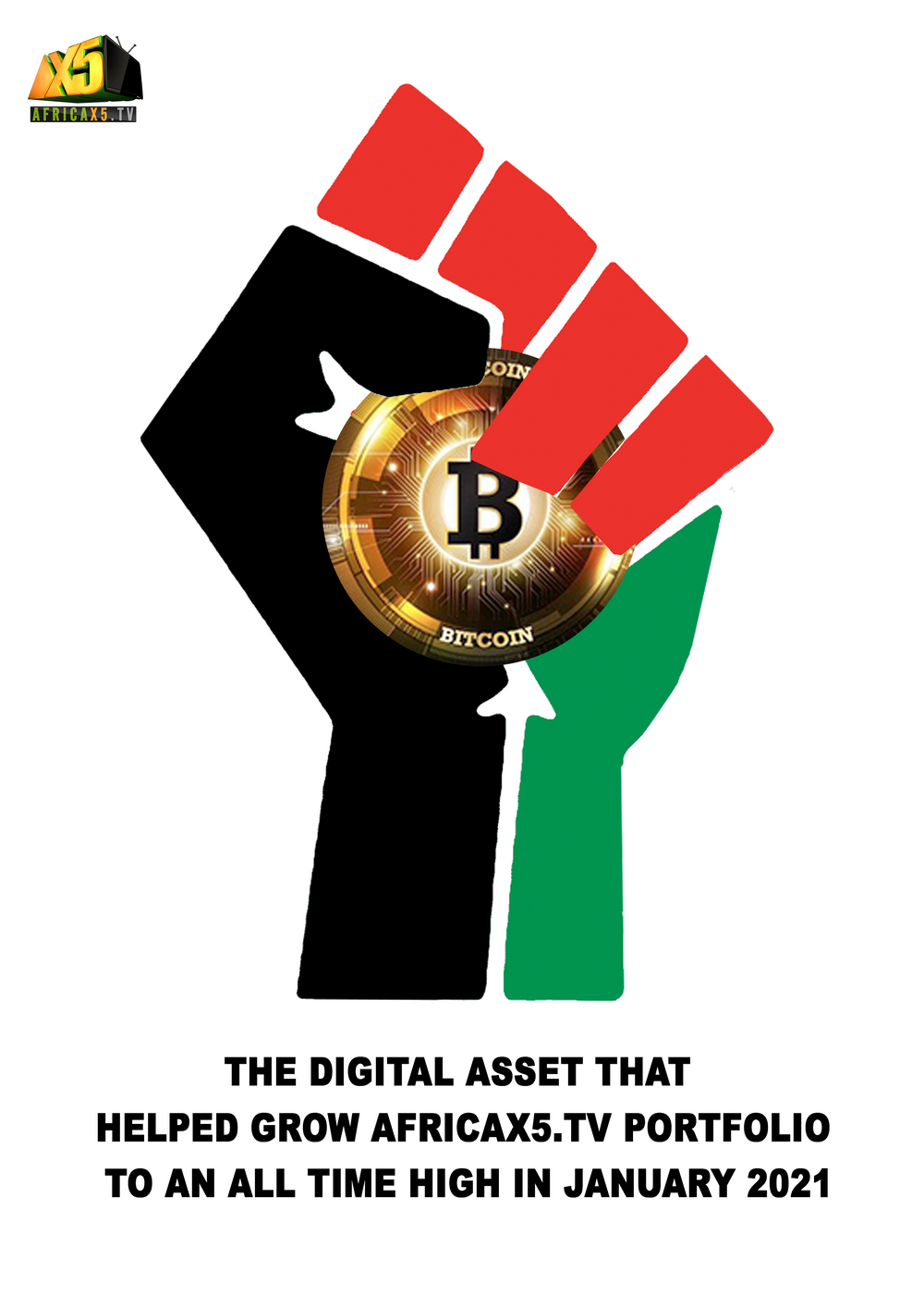 The DIGITAL ASSET that helped grow Africax5 Portfolio to An All Time High in 2021 (EBOOK)