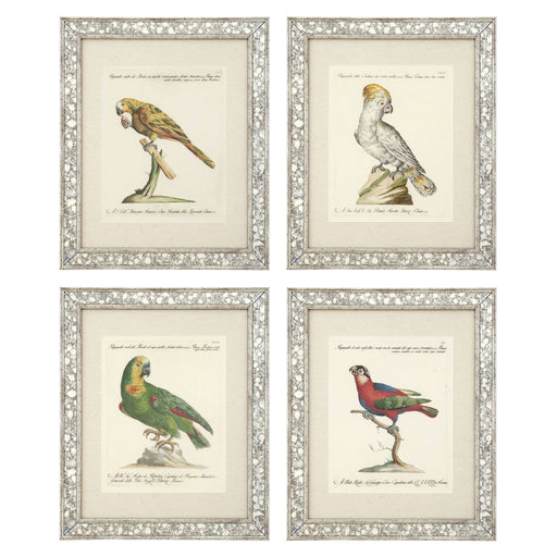 Dunbar II set of 4 Prints   by Eichholtz | Modern Lighting + Decor