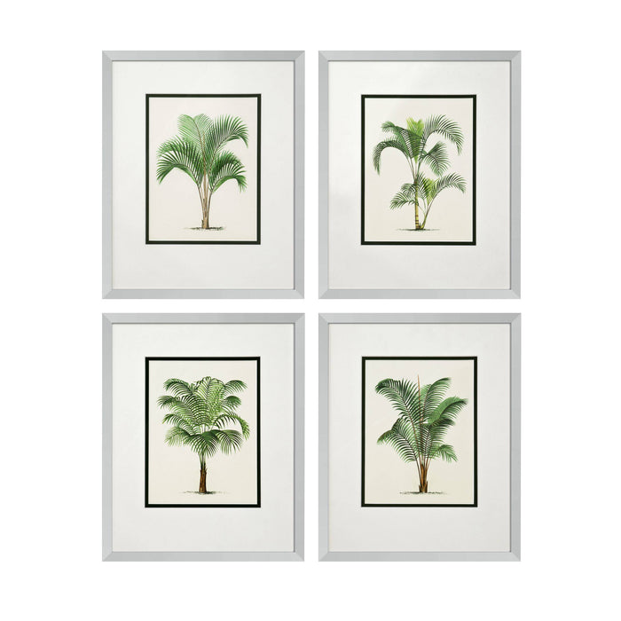 Palms set of 4 Prints   by Eichholtz | Modern Lighting + Decor